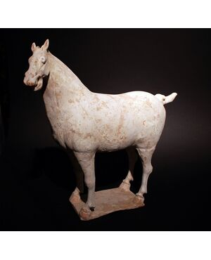 Cavallo in terracotta