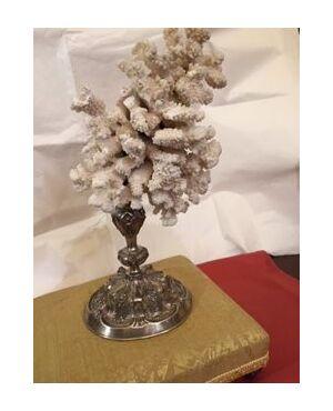 Corallo bianco su base bellissima argento del 1700 h 45 cm